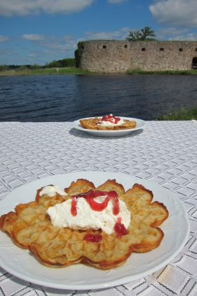 Waffles and a Castle