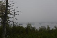 Misty Overlook